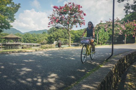 Another shot of Abby riding through Nara park.