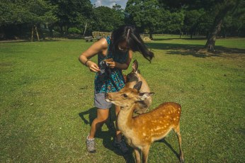 A deer grabs Abby's shirt in an attempt to get her to drop the treats.